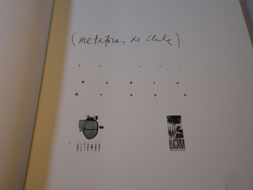 metaforas de chile p. araya