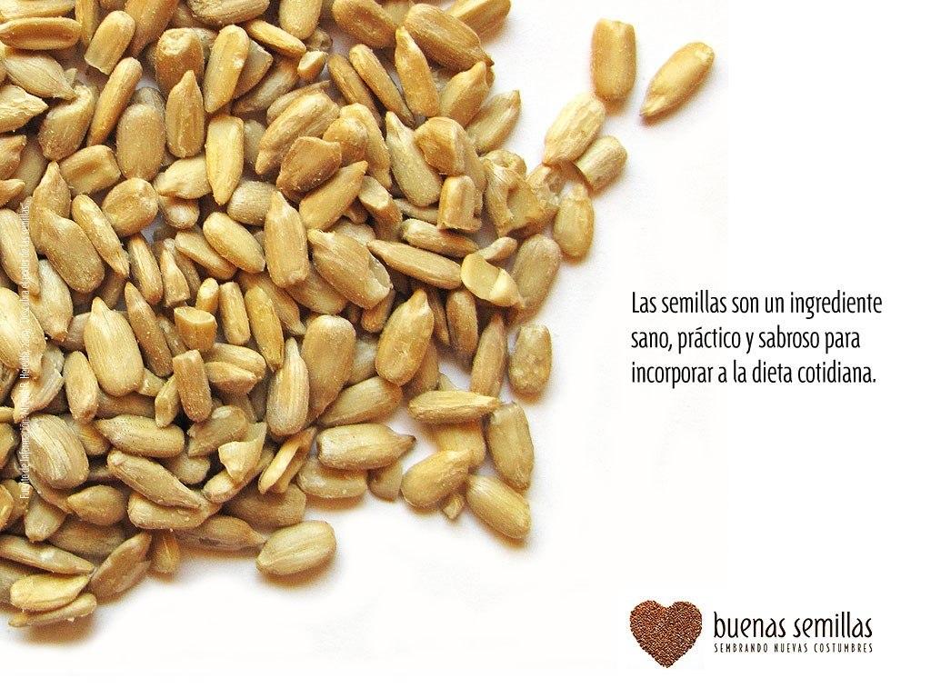 semilla de curcuma