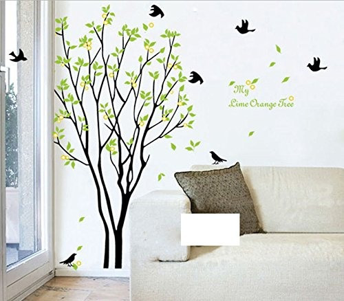 mi cambio del tiempo libre de hojas verdes árbol swallows p