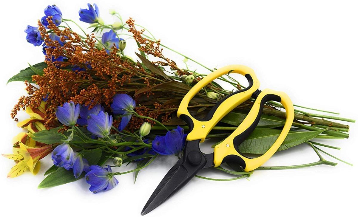 Tijeras florales de grado profesional Micman