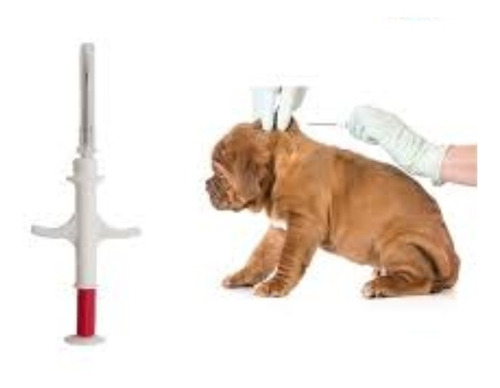 microchip para mascotas, perro, gatos, caballos y etc