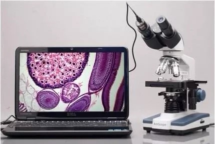 microscopio optico binocular 3d 40x a 2500x camara usb 5mp