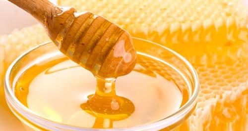 miel 1 kg orgánica el arbol