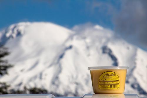 miel de abejas de puerto varas / 6 potes / envío gratis
