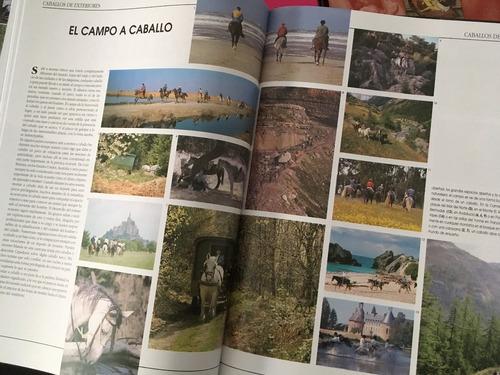 mil imagenes de caballos (en papel)