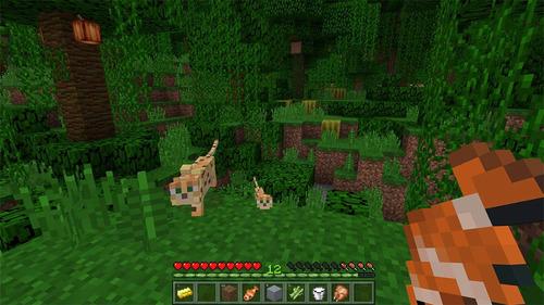 minecraft juego +video