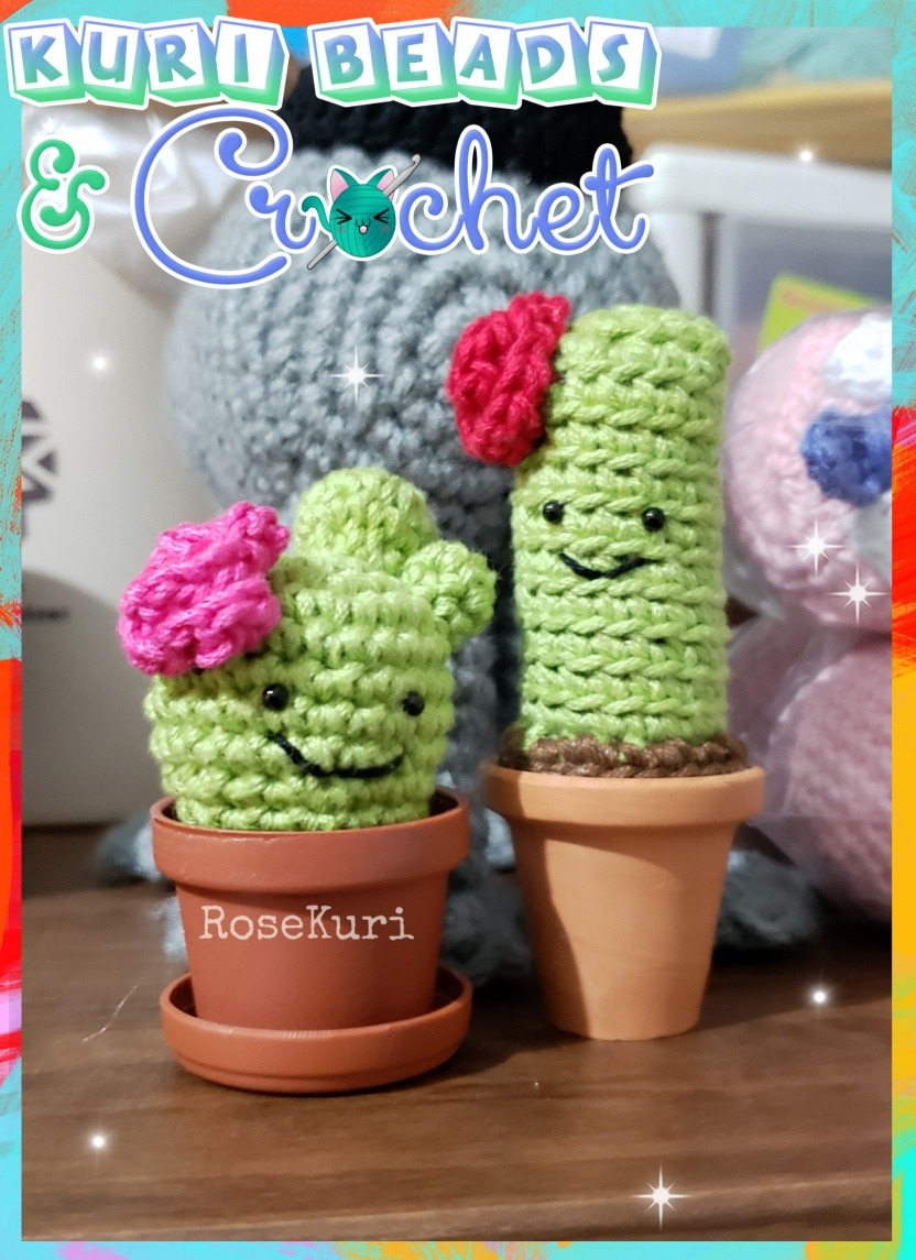 Cactus Amigurumi ganchillo gordas plántulas por FiloAndFimo en ... | 1145x832