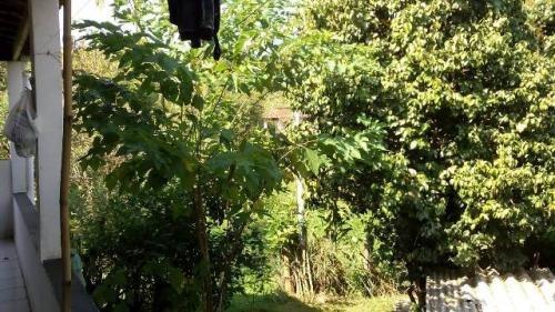 mini-chácara em pedro de toledo, 3 km  da rodovia