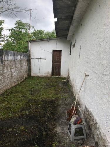 mini chácara no bairro sítio velho