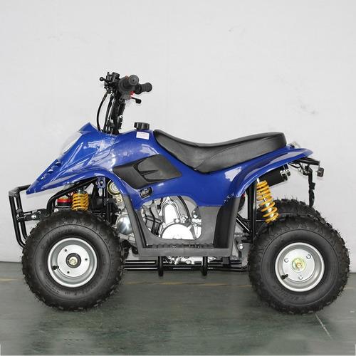 mini cuatrimoto, 110 cc, ideal niños
