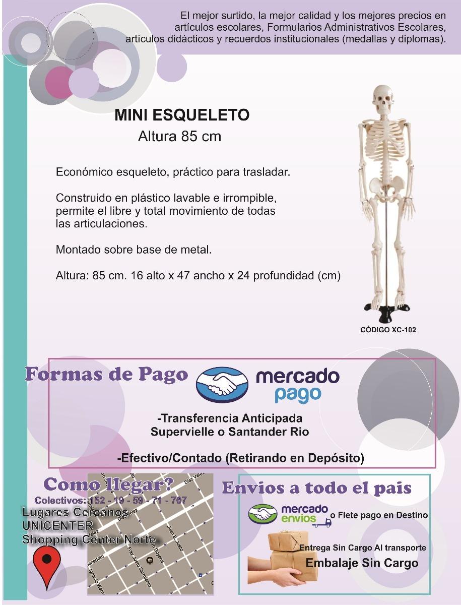 Mini Esqueleto Humano 85 Cms - Modelo Anatomia - $ 2.440,00 en ...