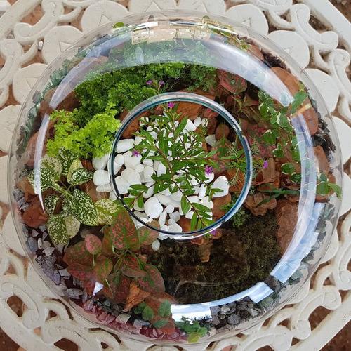 mini jardim tamanho 3