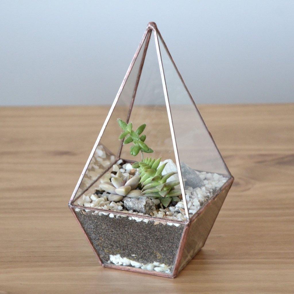 mini jardim terrario : mini jardim terrario:mini-jardim-terrario-pirmide-base-quadrada-g-D_NQ_NP_385721