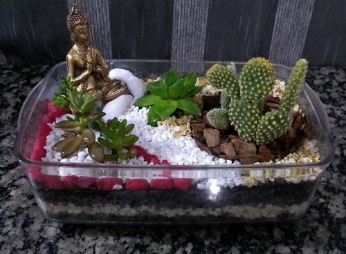 mini jardins de suculentas