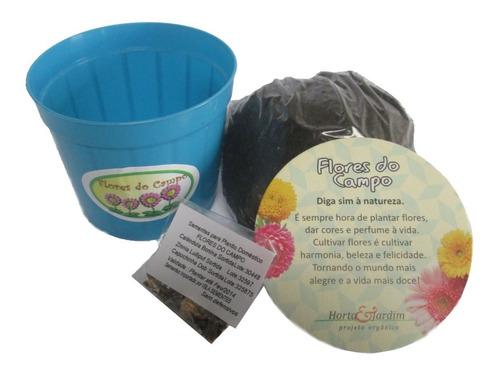 mini kit vamos plantar flores do campo - combo 15 un