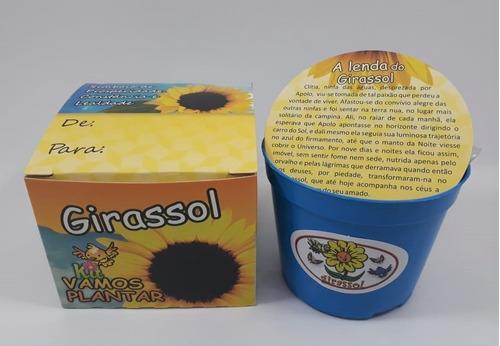mini kit vamos plantar girassol - combo com 15 un
