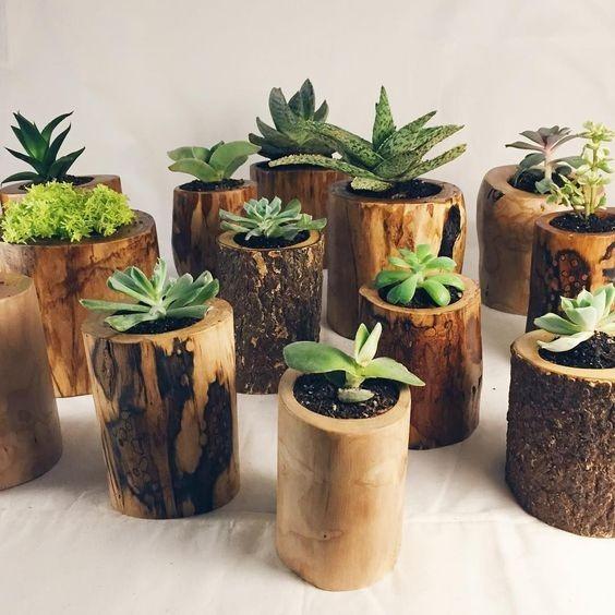 Mini Materos Macetas En Madera Para Jardin Cactus - Bs. 180.000,00 ...