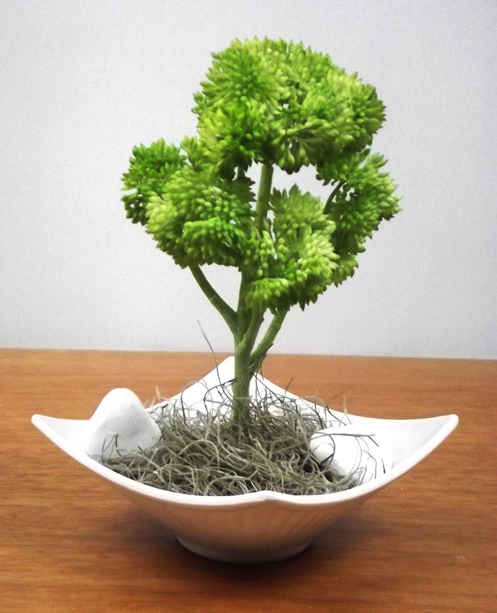 Mini planta bonsai p colorido mini rvores artificial r 29 80 em mercado livre - Plantas para bonsai ...