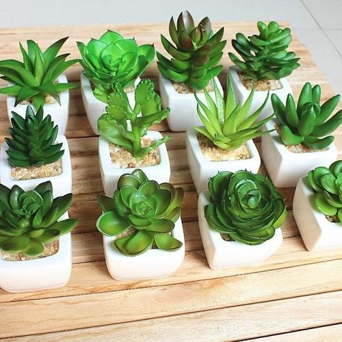 mini planta plantitas tuna cactus artificial souvenir clic
