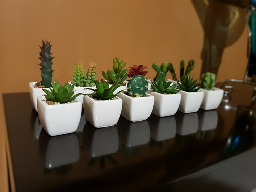 mini suculentas planta artificial maceta en cerámica