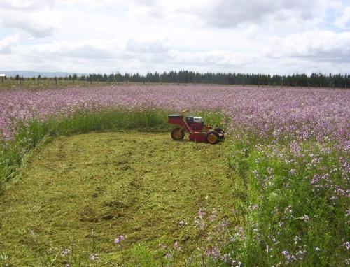 mini tractor cortacesped roland h001 std c/ motor honda 13hp