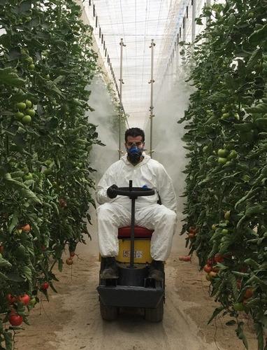 minifumigador 300l para tomate y pepino, invernadero promo