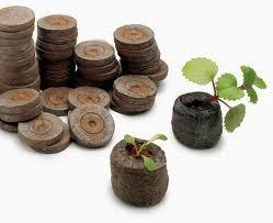 miniinvernadero,, 12 pellets para germinar plantas  sdqro1