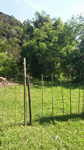 miracatu - chácara/3.000 mts/plantio/facilita ref 04492