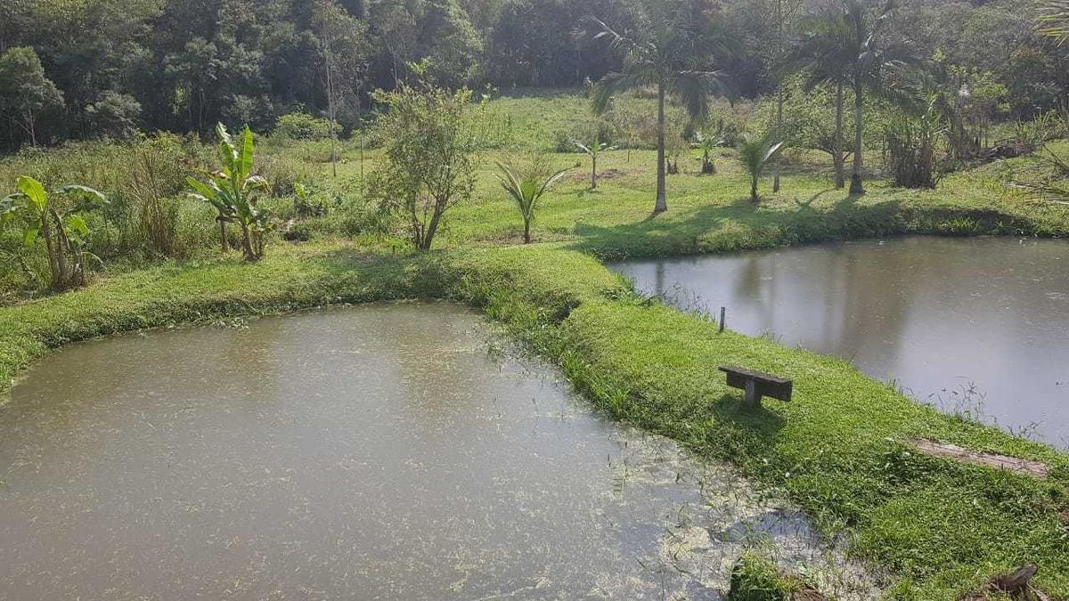 miracatu/piscina/02 lagos/sede/próx cachoeira/ref:04929