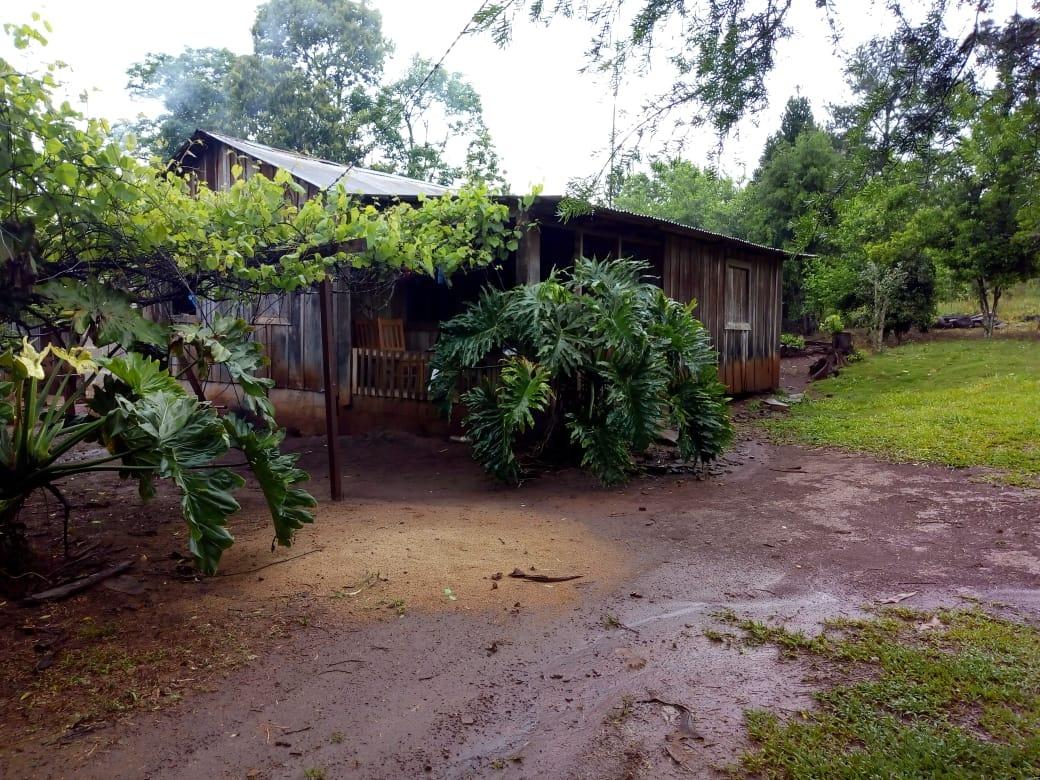 misiones vendo chacra con casa, 9 ha 5 de ella tiene pino