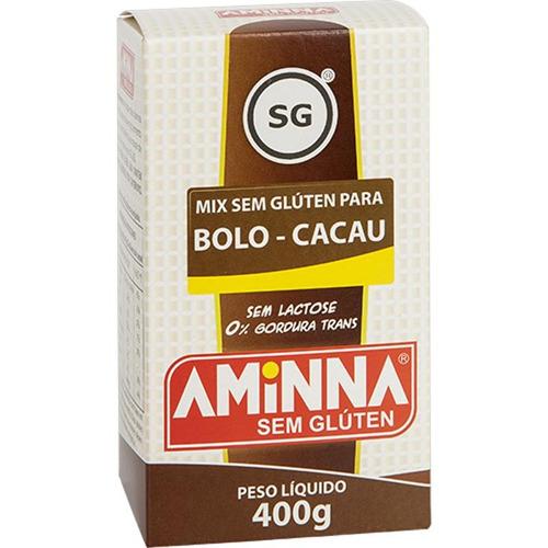 mistura para bolo sem glúten sabor cacau 400g - aminna