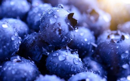 mix de frutos azules congelados i q f - 1 kg