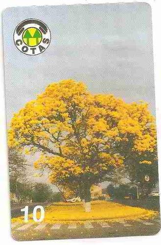 ml-4504 bolívia cotas out/97 ipê-amarelo