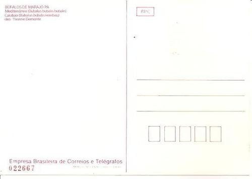 ml-4935 maximo postal brasil ( búfalos de marajó-pa ) 1984