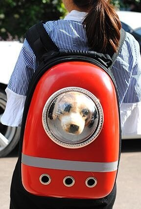 mochila para gato tipo u-pet (paseo o transporte)