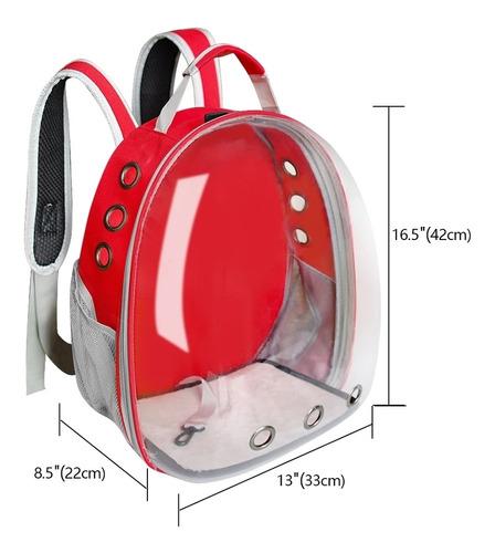 mochila transportadora para gatos, perros y conejos