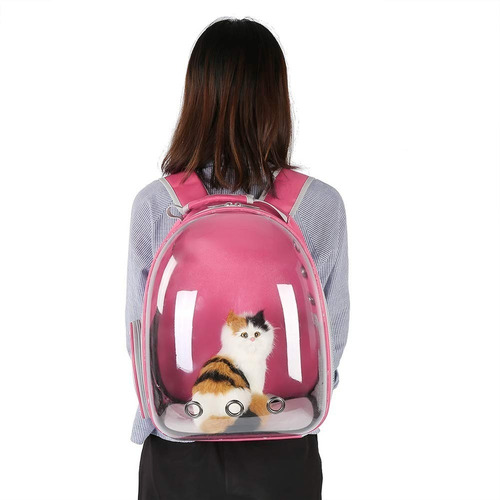 mochila transportadora transparente mascota gato perro viaje