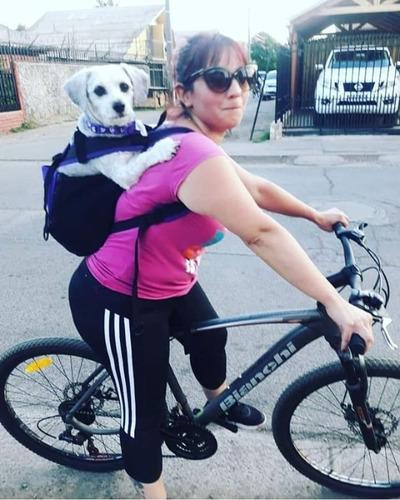 mochila  yoshos para llevar al perro