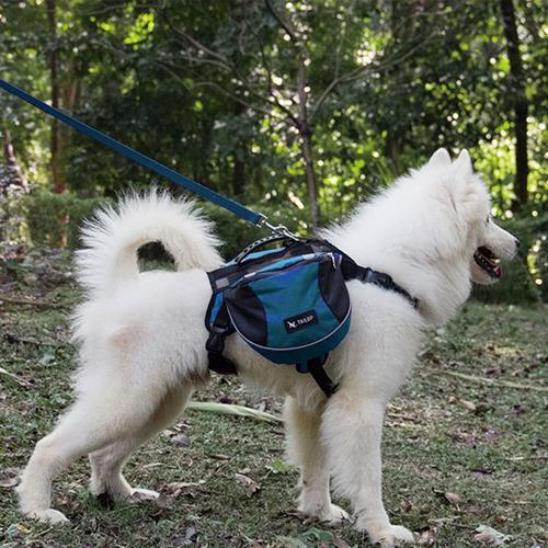 mochilla de perro gato árnes accesorios de mascotas