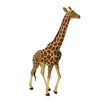 modelo anatomico 4d la jirafa increible importado anatomia