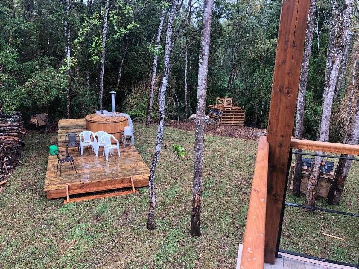 moderna casa en medio de bosque nativo