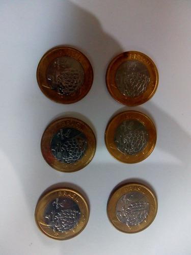 moeda do mascote