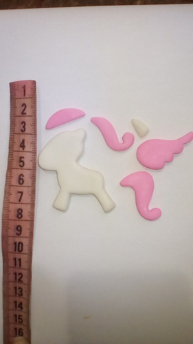 molde silicon  pony