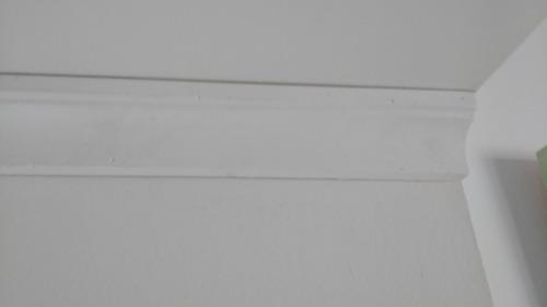 molduras yeso antihumedad pared techo