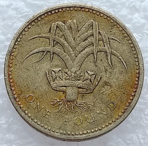 moneda 1 libra reino unido 1985 elizabeth ii