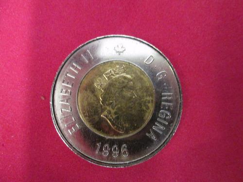 moneda 2 dollar canada oso polar.