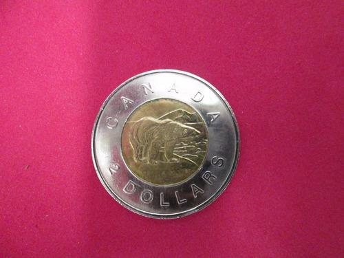 moneda 2 dollar canada oso polar. envio gratis