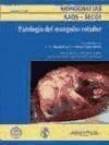 monografía nº 1/2003: patología del manguito rotador(libro o