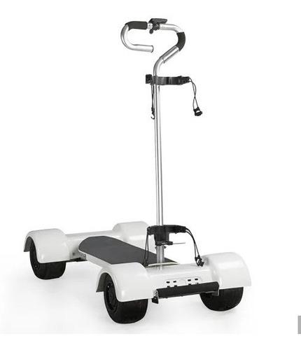 monopatín scooter golf golfboard ecorider carro golf