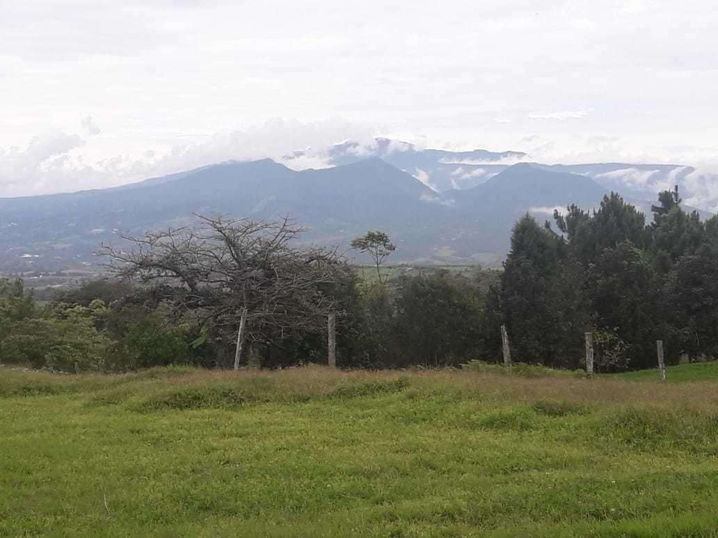 montañas coronado sin intermediarios